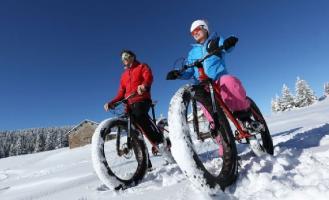 Электровелосипед-вездеход для любой погоды